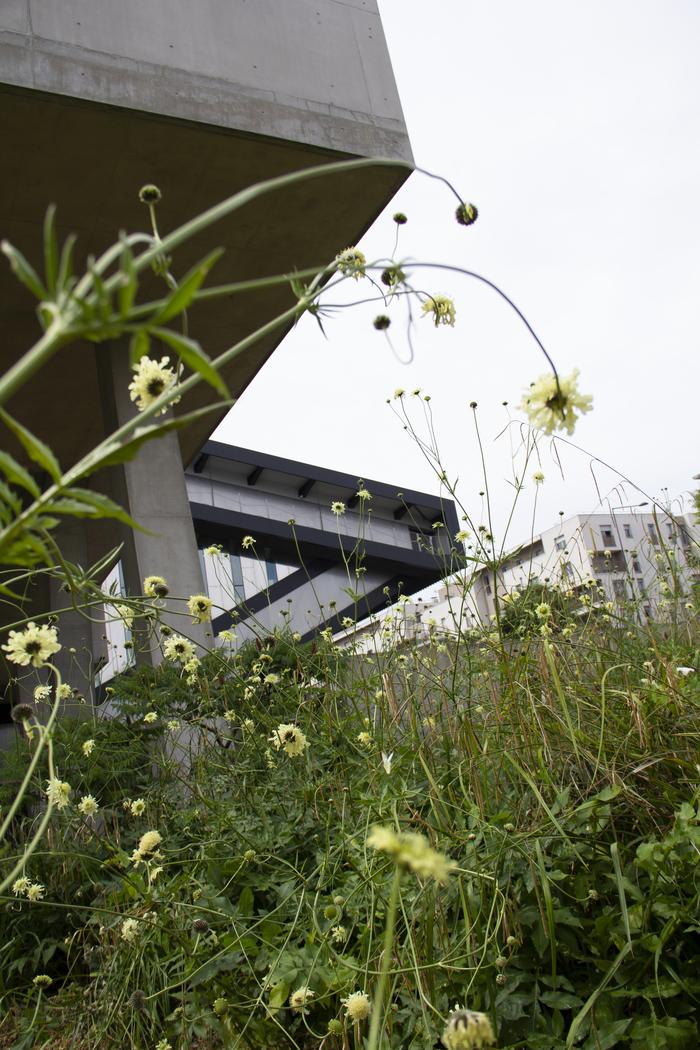 Journées du patrimoine 2020 - Un après-midi au jardin avec les chercheurs de la MSH Paris Nord : dance floor expérimental aux sonorités immersives