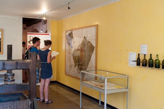 Journées du patrimoine 2019 - Visite commentée du musée de la Vigne et du Vin d'Arbois