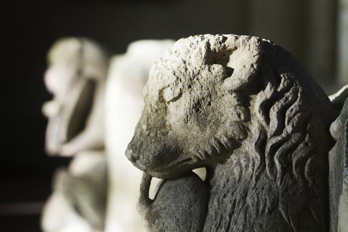 Journées du patrimoine 2020 - Musée : présentation des collections patrimoniales de la Société historique de Soissons dans la salle capitulaire (sous réserve)