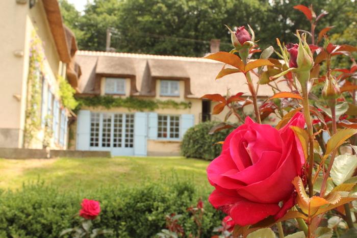 Journées du patrimoine 2019 - L'histoire des jardins européens, des origines à nos jours