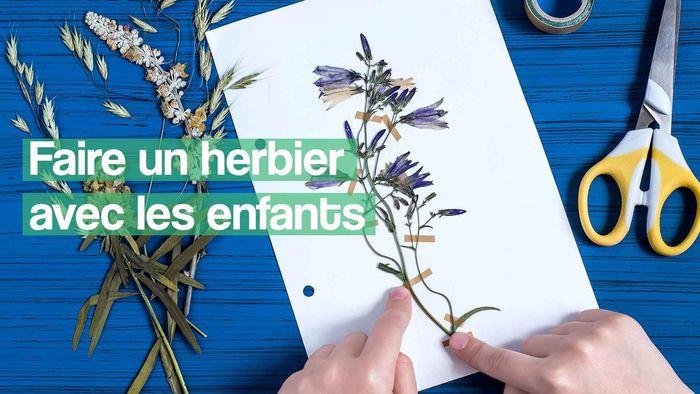 Journées du patrimoine 2019 - Création d'un herbier en famille