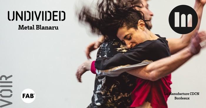 Undivided – Meytal Blanaru
