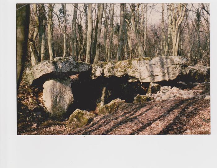 Journées du patrimoine 2019 - Visite  de l'Allée Couverte de Dampsmesnil, monument néolithique