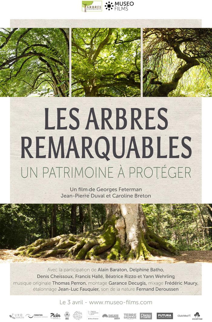Journées du patrimoine 2020 - Annulé | Projection du film Les Arbres Remarquables