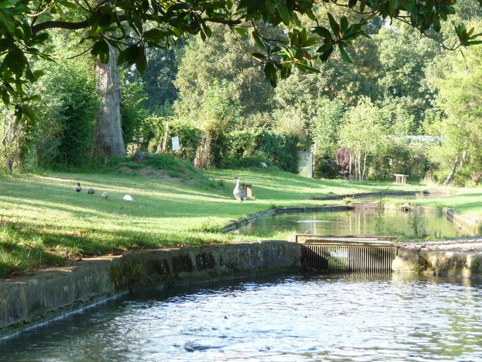 Journées du patrimoine 2019 - Découverte de la pisciculture de Villette, de son moulin à eau et des ateliers de conserverie et de fumaison artisanale.