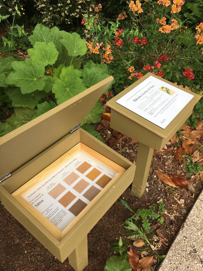 Journées du patrimoine 2020 - Démonstration : La beauté cachée du jardin