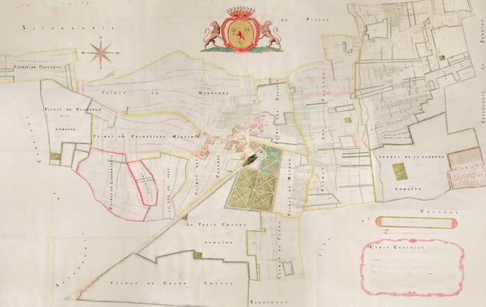 Journées du patrimoine 2020 - Levez les yeux et admirez, au plafond, le cadastre du Plessis-Praslin de 1782