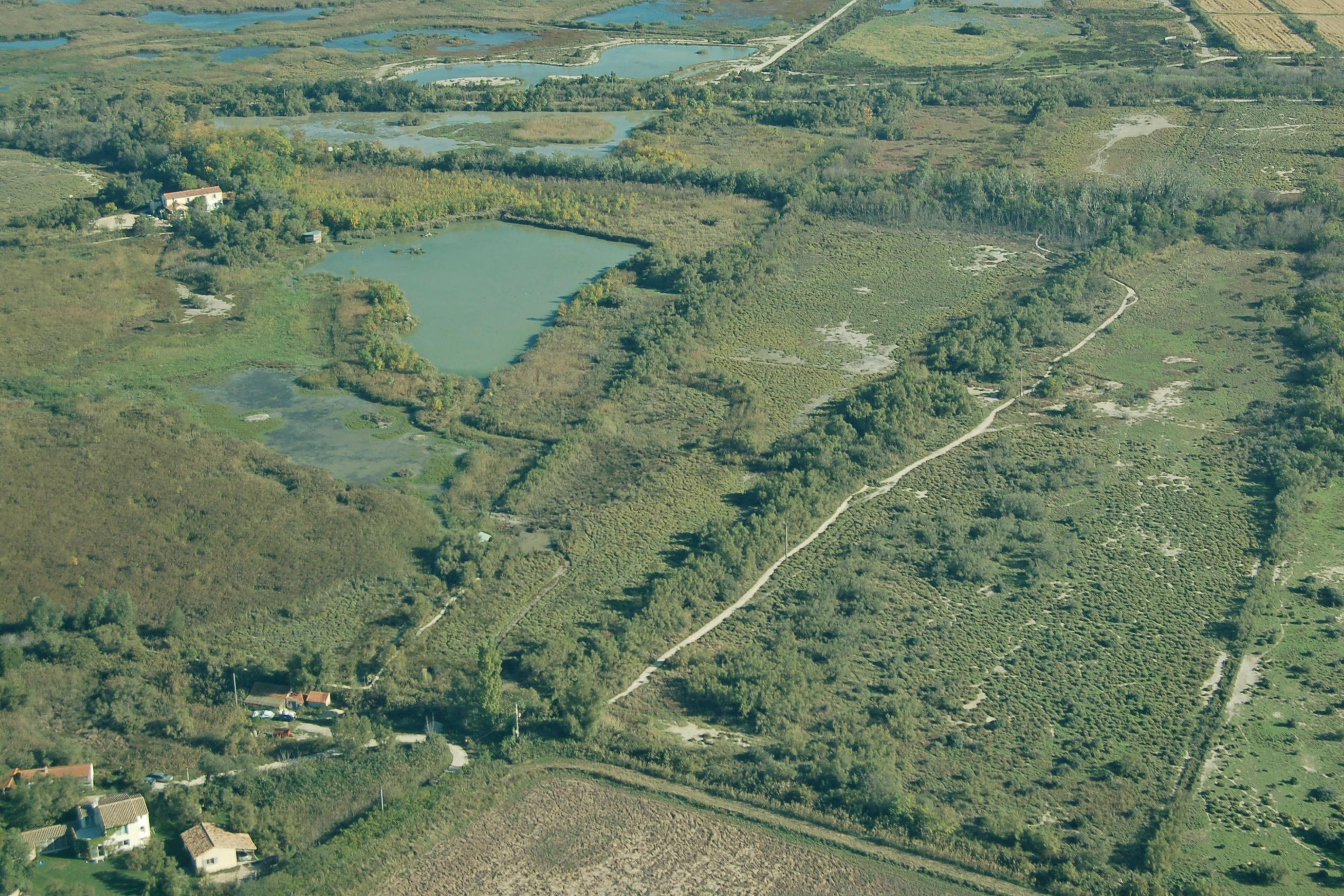La Réserve Naturelle Nationale de Camargue ouvre ses portes gratuitement à la Capelière