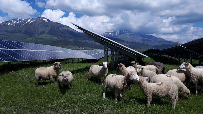 Journées du patrimoine 2019 - Visite commentée de la centrale photovoltaïque.
