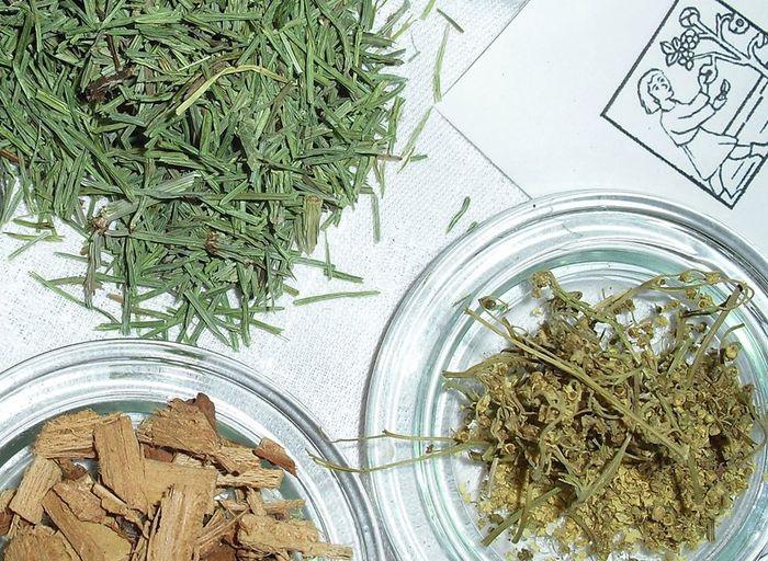 Usages des Plantes Medicinales
