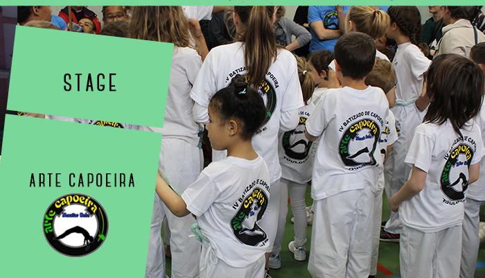 WE Capoeira // ANNULATION