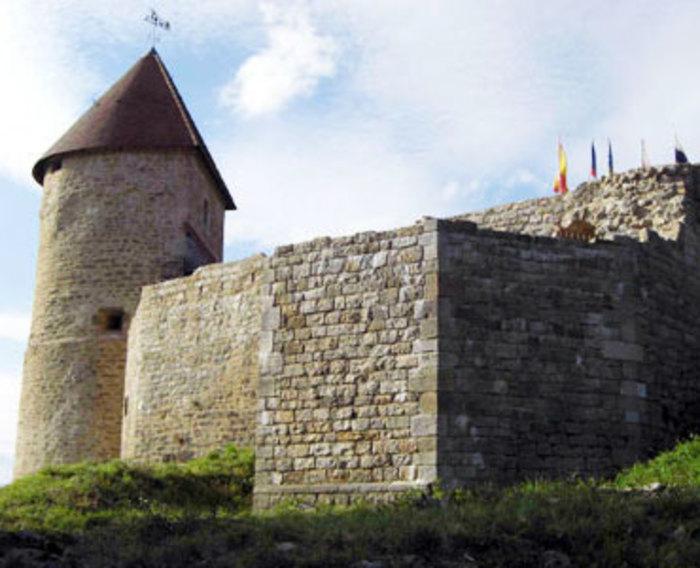 Journées du patrimoine 2020 - Animations au château de Chevreaux