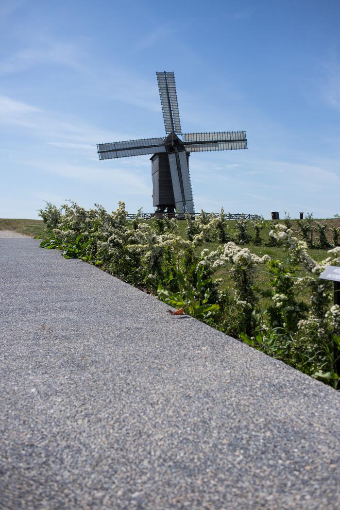 Journées du patrimoine 2019 - Moulin en mouvement