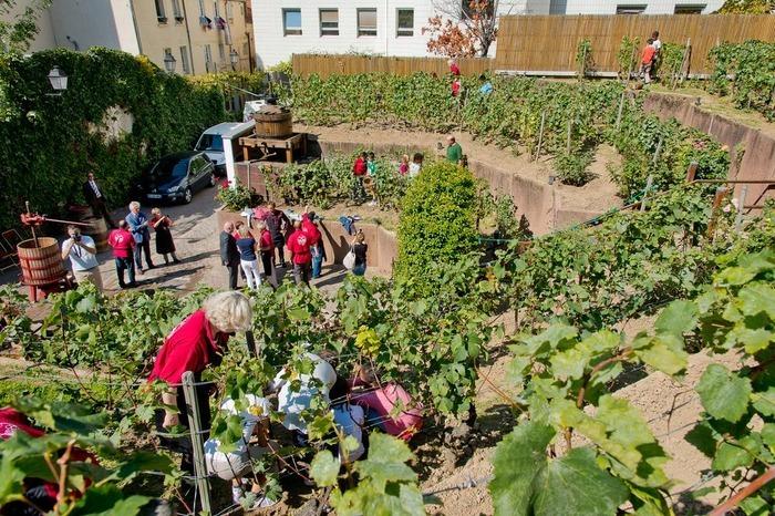 Journées du patrimoine 2020 - Visite libre du Chemin des vignes