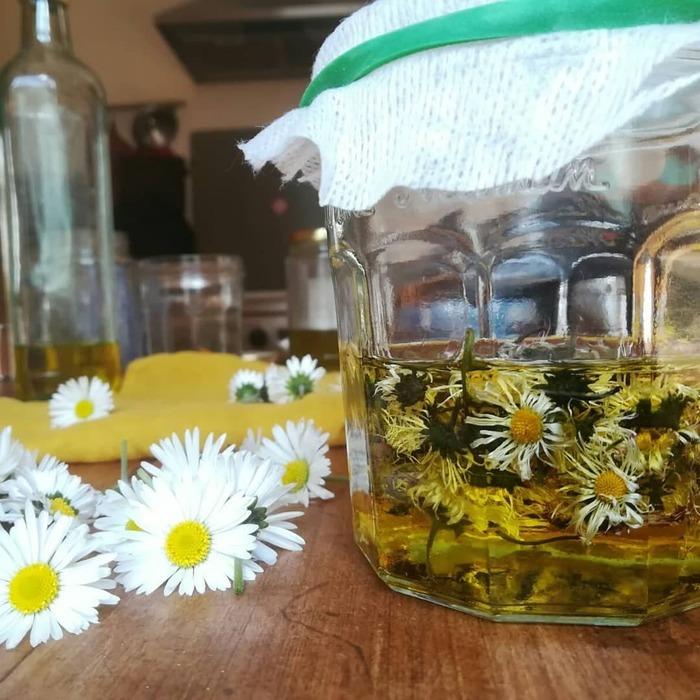 Découverte de l'usage des plantes de nos parcs et jardins et apprendre à élaborer quelques produits simples, huile florale, vinaigre floral, sel aromatique de plantes etc..au fil des saisons.