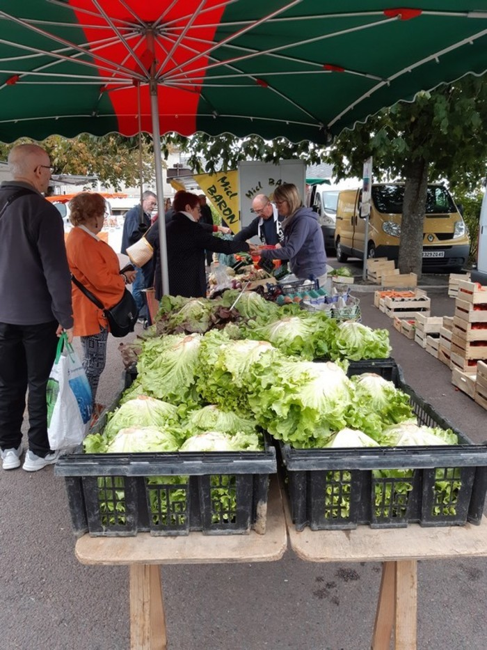 Les marchés  font partie intégrante du mode de vie français, au plus près de la nature et des gens qui la côtoient. Faire son marché, c'est prendre le temps de faire ses courses différemment et se ...