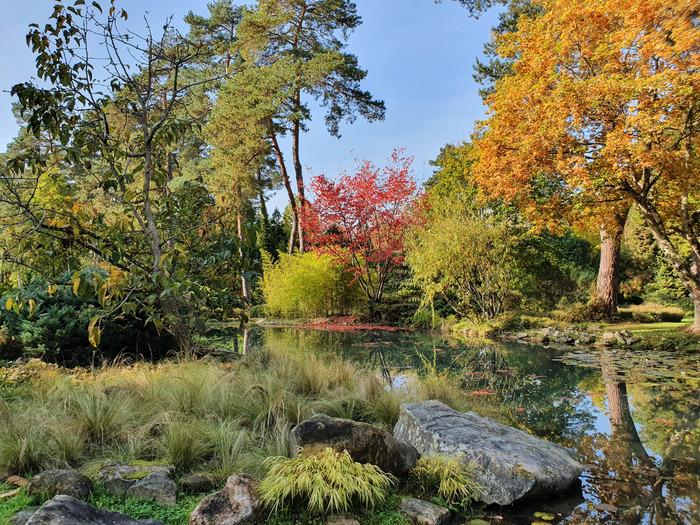 Les paysages d'automne à l'Arboretum sont autant de tableaux aux couleurs flamboyantes. Créez vos propres cadrages et tentez de gagnez des cadeaux !