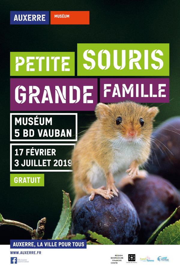 Nuit des musées 2019 -Petite souris, grande famille