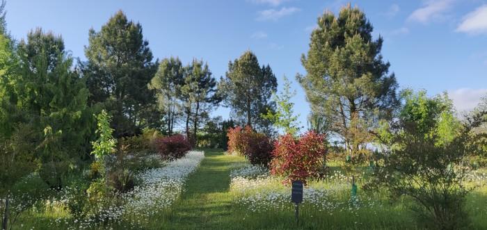 Journées du patrimoine 2019 - Journées Européennes du Patrimoine 2019 - Découverte des Jardins et Exposition de Peintures