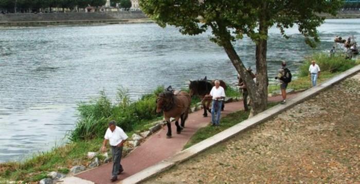 Journées du patrimoine 2020 - Démonstration de halage au bord du Rhône