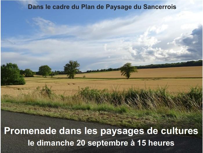Journées du patrimoine 2020 - Promenade paysage de cultures