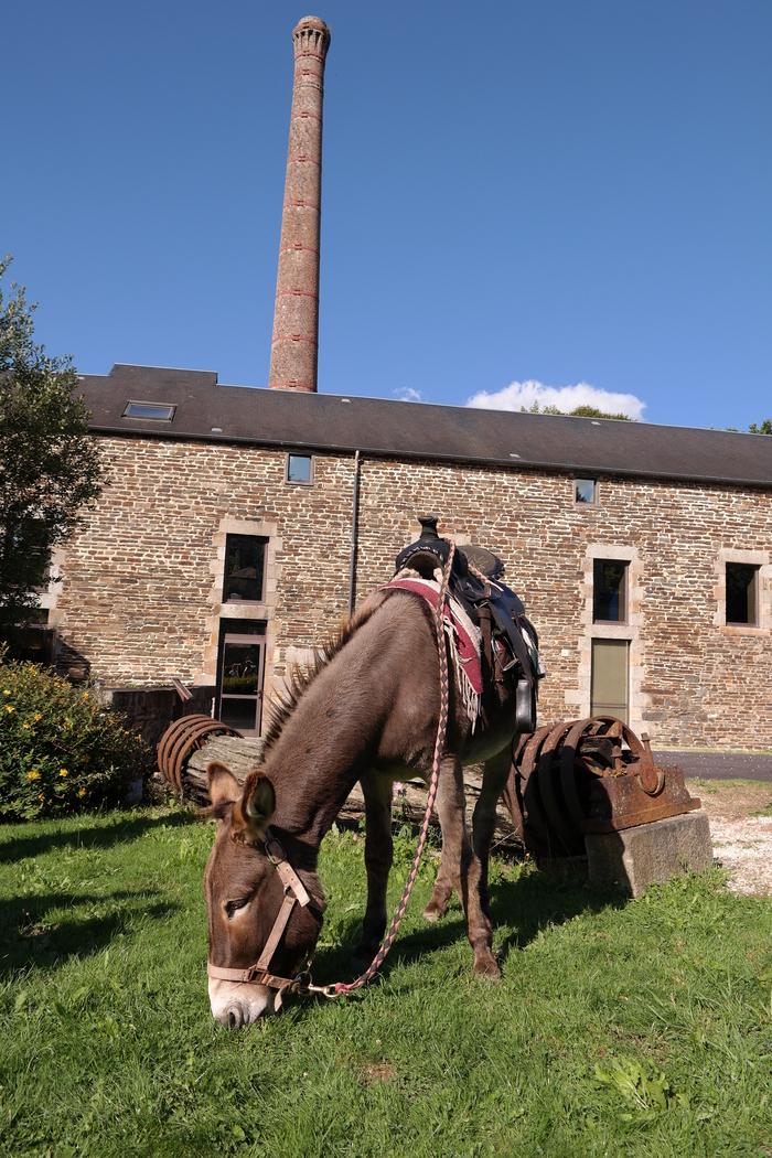 Journées du patrimoine 2019 - Visite libre du moulin de la Sée