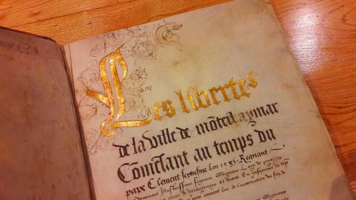Journées du patrimoine 2020 - Visite guidée des Archives de Montélimar, 800 ans d'histoire