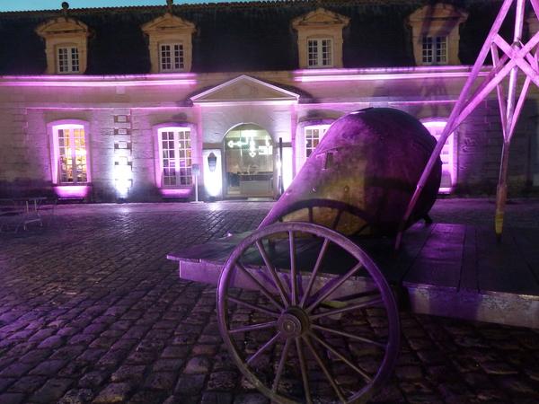 Nuit des musées 2019 -On joue sur les cordes !  Impromptus musicaux et visite libre des expositions