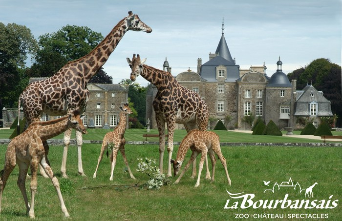 Journées du patrimoine 2020 - Château et Jardins de La Bourbansais