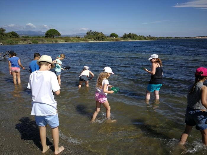 Journées du patrimoine 2020 - Atelier découverte des petites bêtes de la lagune et des dunes