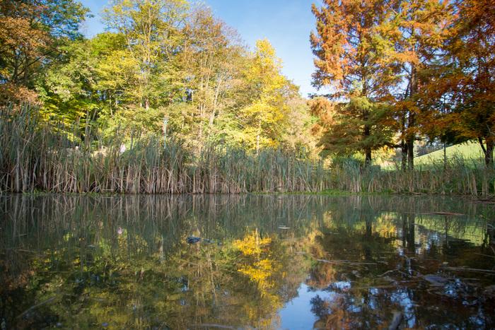 Journées du patrimoine 2019 - Visite libre du parc des Larris
