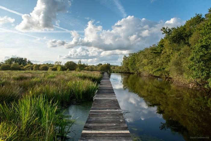 Journées du patrimoine 2019 - Visite guidée sur la gestion écologique du Marais du Grand Hazé