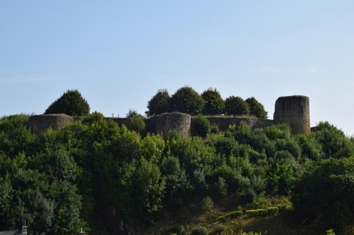 Journées du patrimoine 2020 - Visite libre du Château de Léhon
