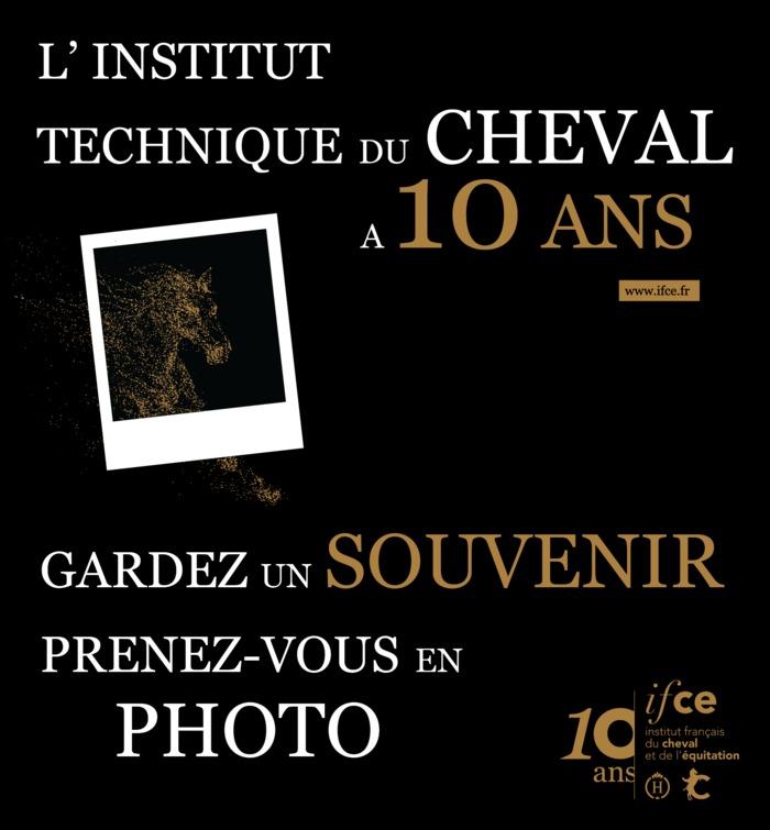 IFCE - l'Institut français du cheval et de l'équitation : l'institut technique au service de la filière équine.