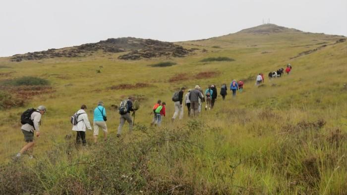 Journées du patrimoine 2019 - Sortie nature à la découverte du Puy de Wolf, site classé Natura 2000