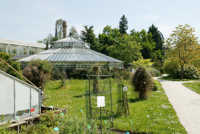 Journées du patrimoine 2020 - Visite du jardin botanique