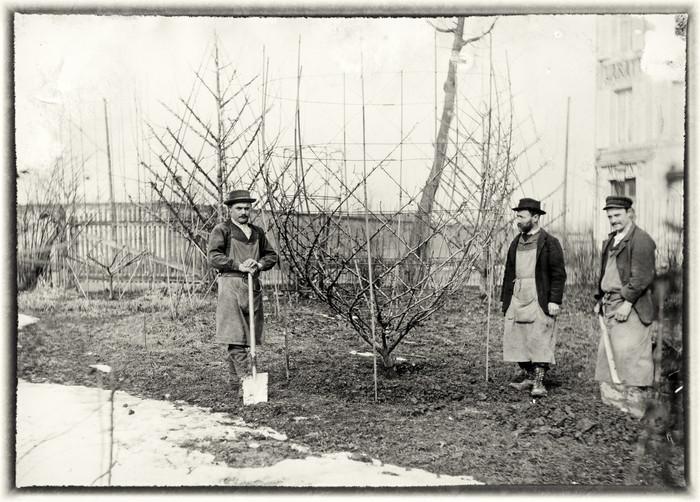 Journées du patrimoine 2020 - Exposition — Jean-Joseph Picoré, grand maître de l'arboriculture en Lorraine