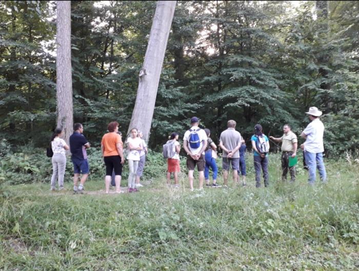 Journées du patrimoine 2019 - Visite guidée en forêt de Crécy