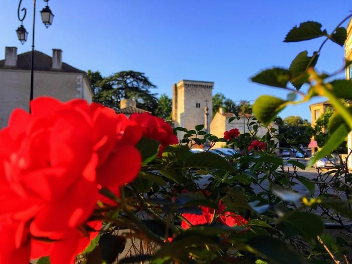 Journées du patrimoine 2020 - Flash sur le Château - Exposition photos
