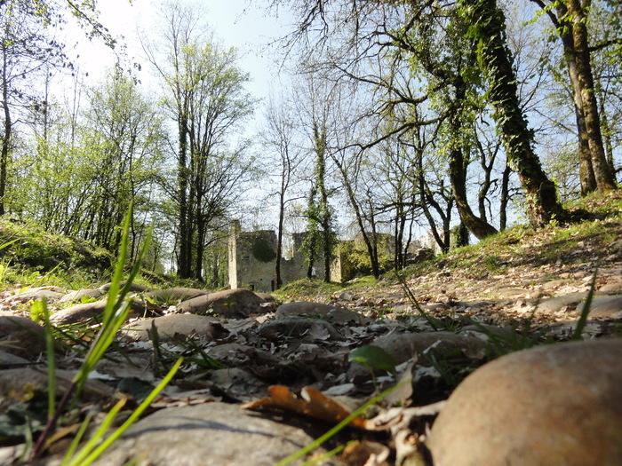 Journées du patrimoine 2019 - A Quirieu, « restez encore un moment »