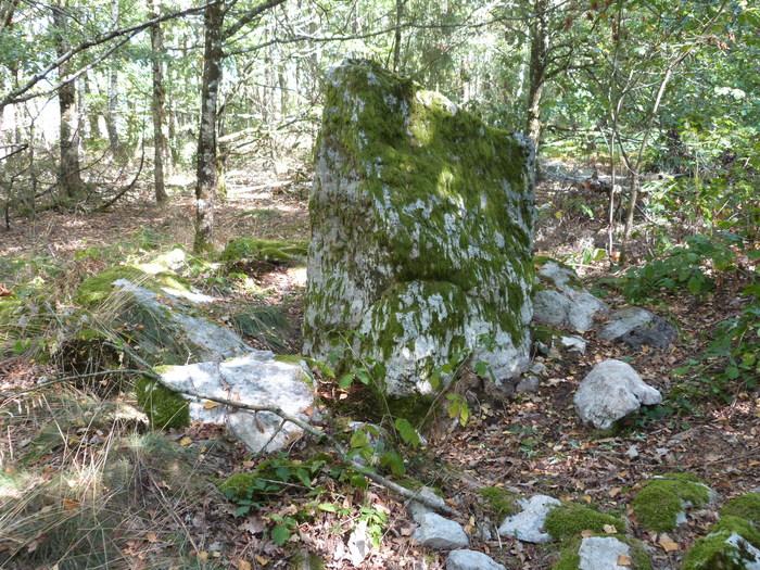Journées du patrimoine 2020 - Levez les yeux sur un site néolithique
