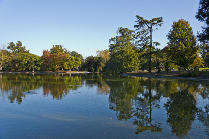 Un jardin à l'anglaise dans la campagne bordelaise : découverte du parc bordelais