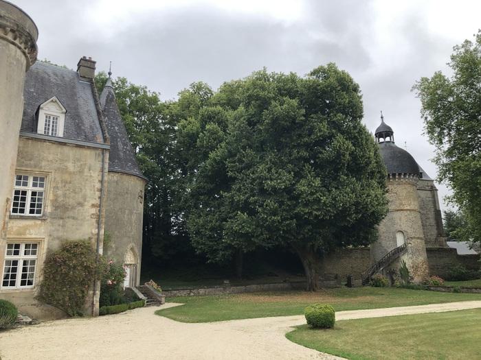 Journées du patrimoine 2020 - Visite libre du château de Cisai
