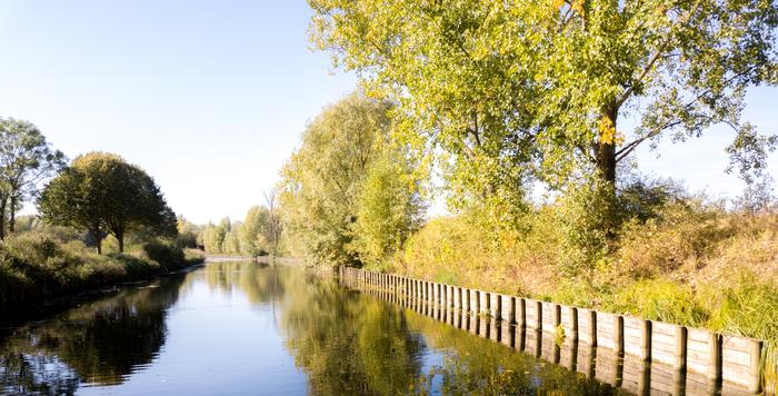 Pêche, nature, dégustation de plantes sauvages … Le Canal de Roubaix, voyage entre patrimoine culturel et naturel!
