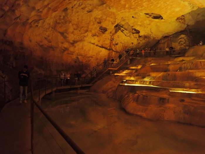 Journées du patrimoine 2019 - A la recherche des chauves-souris à la Grotte Saint-Marcel