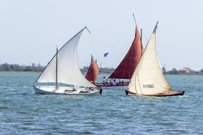 Journées du patrimoine 2020 - Vire-vire de gréements anciens sur l'étang de Bages