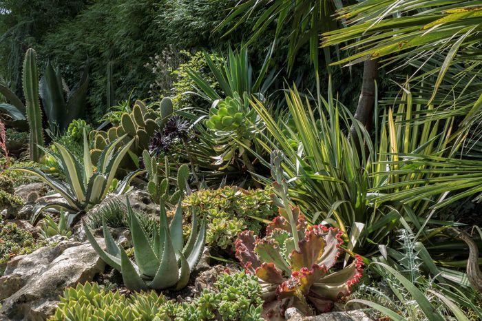 Journées du patrimoine 2019 - Visite du jardin des Petits Près