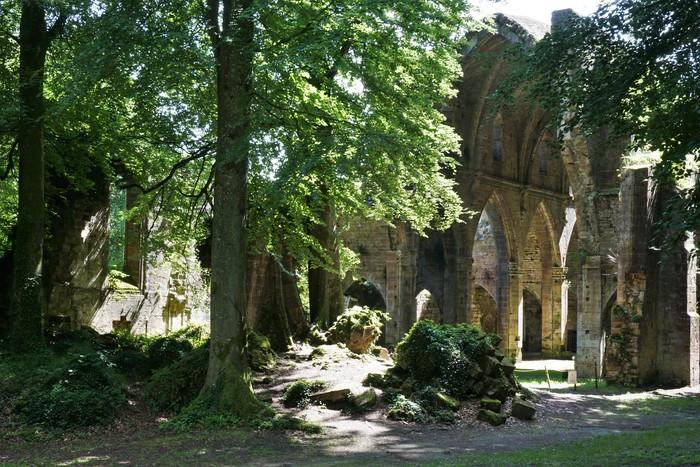 Journées du patrimoine 2019 - Visite libre de l'Abbaye de Trois-Fontaines