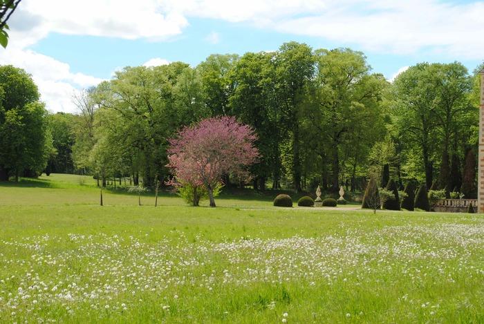 Journées du patrimoine 2020 - Visite libre du parc du domaine