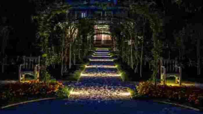 Journées du patrimoine 2020 - Annulé - Nocturne dans le jardin du musée Albert-Kahn